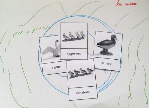 Graphisme : La Ferme PS - MS