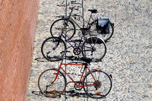 Les 3 vélos !