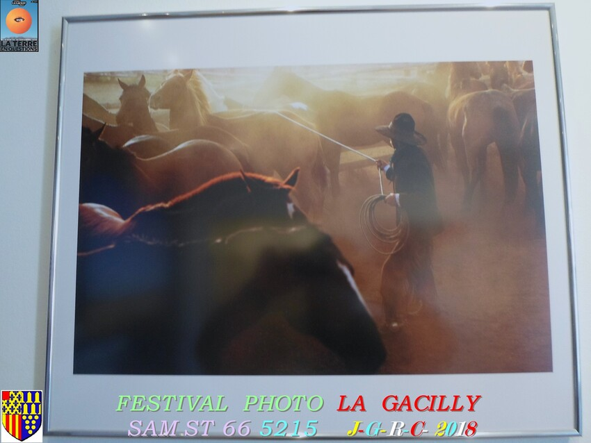 FESTIVAL  PHOTO  2018  LA  GACILLY   D   10/08/2018   1/4