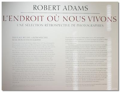 Robert Adams (J1)