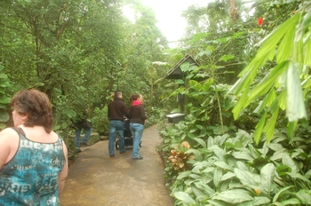zoo cologne d50 2012 091