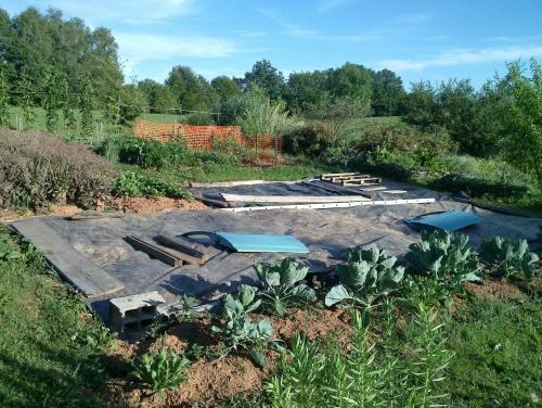 Des photos du jardin, enfin!