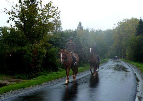 Sous la pluie... cavaliers