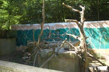 Zoo Duisburg 2012 676
