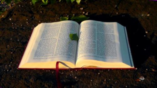 Une Bible et tant de religions