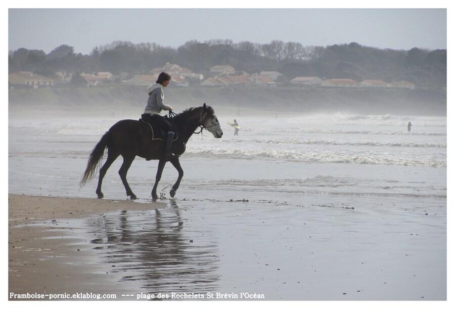 Balade à cheval à St Brévin