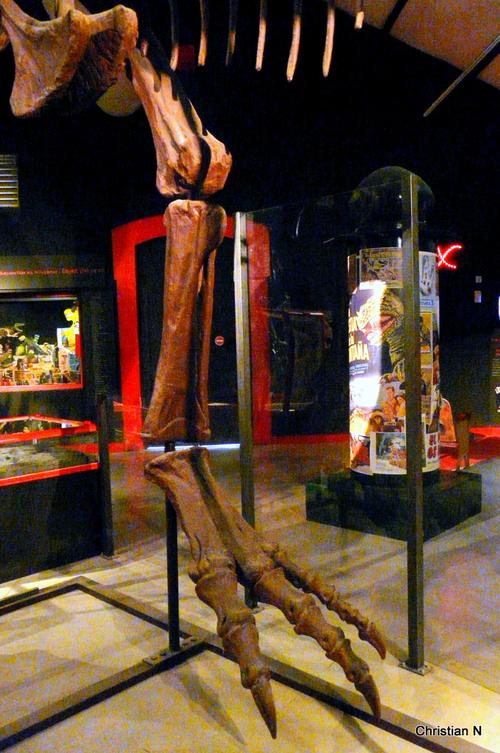 Espéraza: le musée