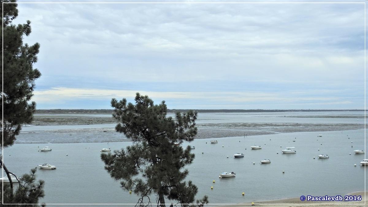 Balade à Claouey sur la presqu'île du Cap Ferret - Octobre 2016 - 2/10