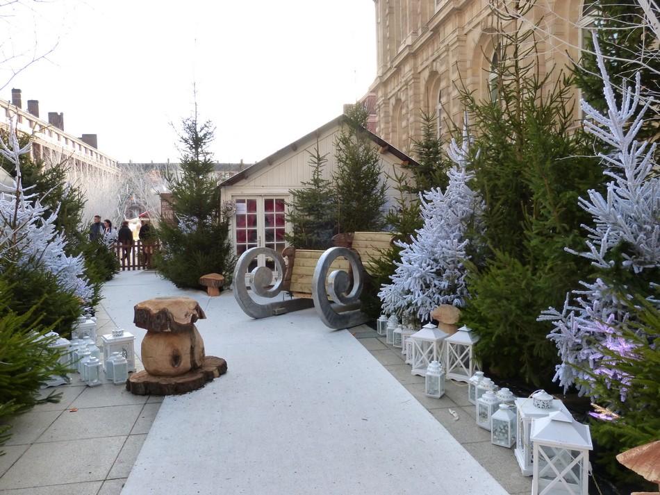 Les décorations de Noël ... le jour !