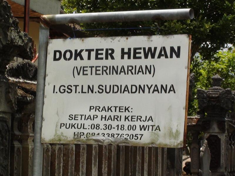 Vendredi 7 Octobre 2011 - Culik - Amlapura - Tulamben.