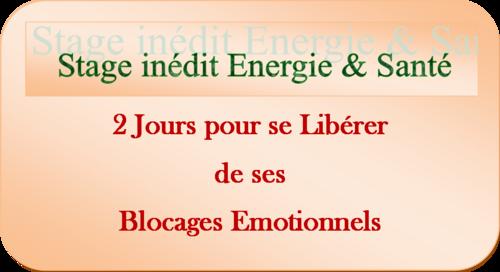 Stage d'été 2017 Energie et Santé