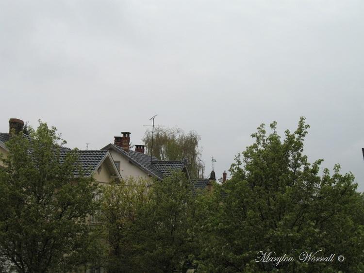 Ciel d'Alsace 264