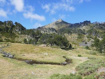 Le plateau et le ruisseau de l'Orri. Au fond, la Montagnette