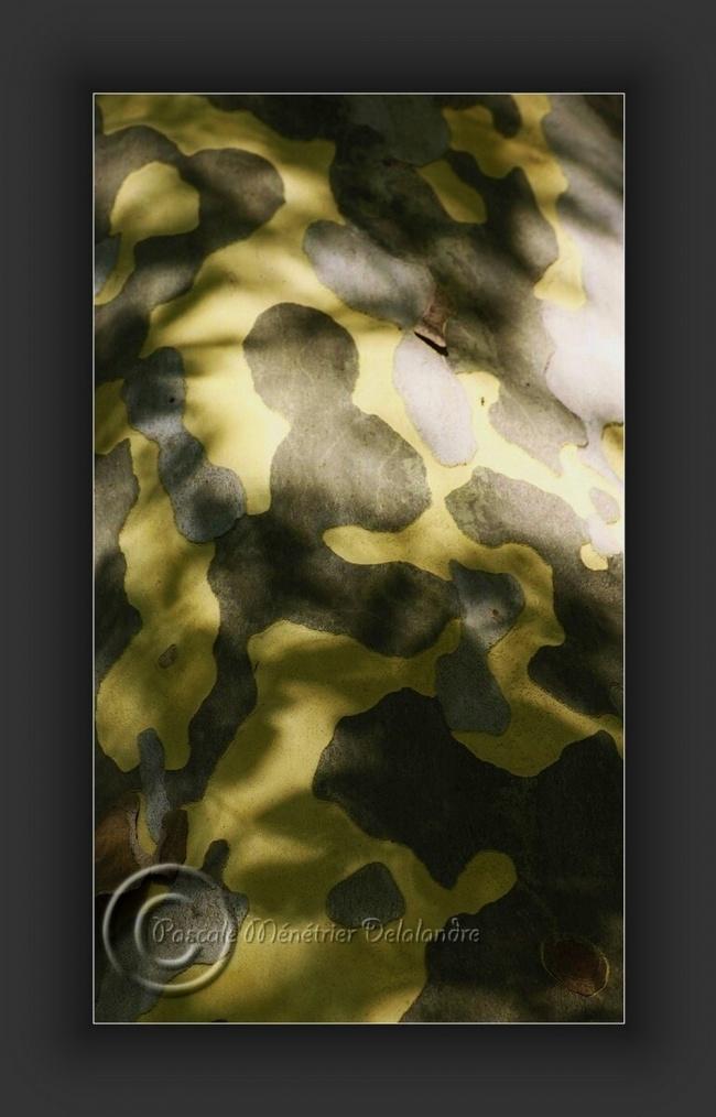 Camouflage de nature...