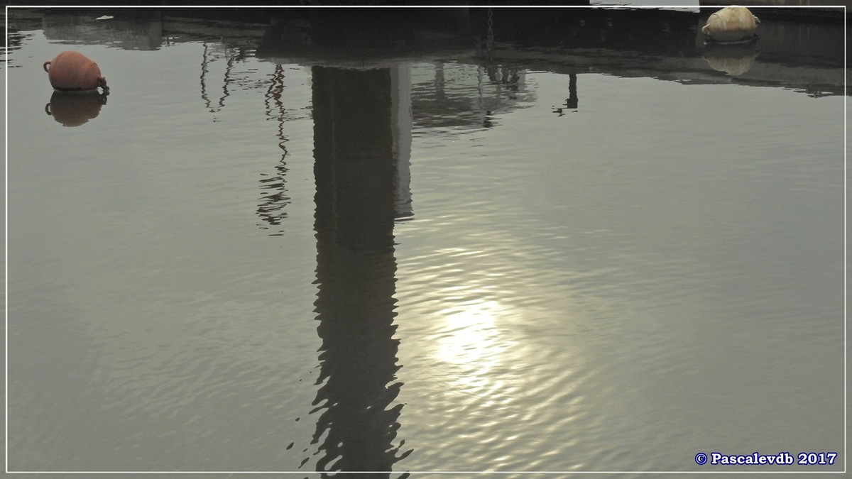 Balade à Gujan-Mestras en Mars 2017 - 12/12