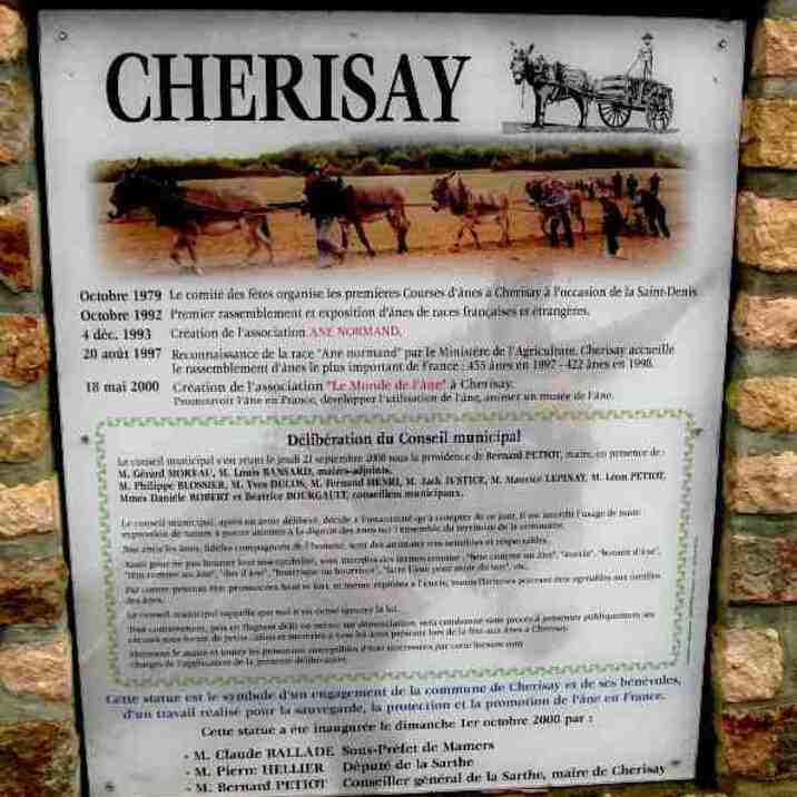 ANE NORMAND au pays de Cherisay - Sarthe