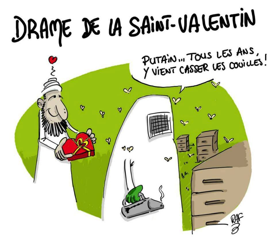 Bonne Saint Valentin Bmw323