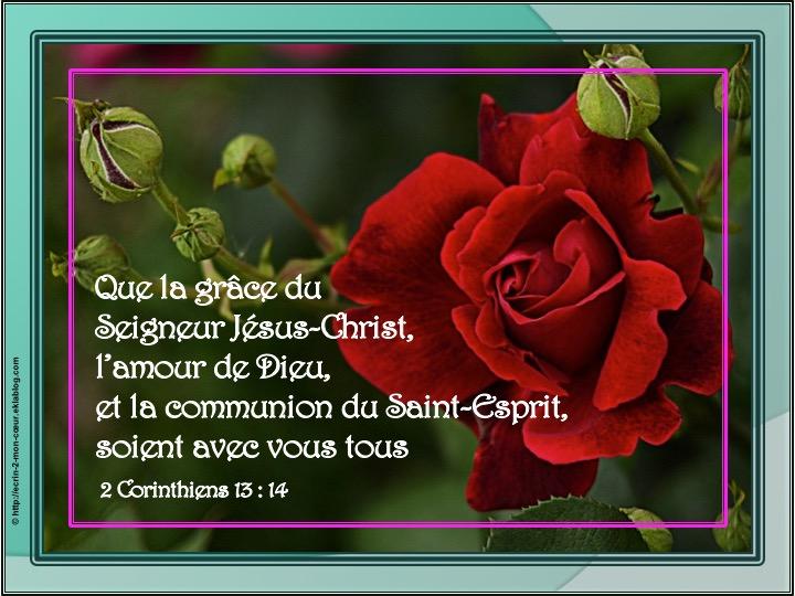 La grâce du Seigneur Jésus-Christ - 2 Corinthiens 13 : 14