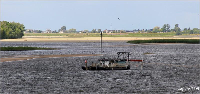 Vue sur Loire