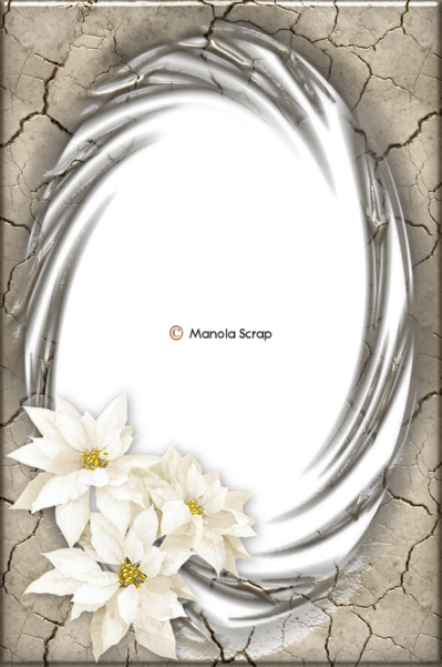 Cadres fleuries 3