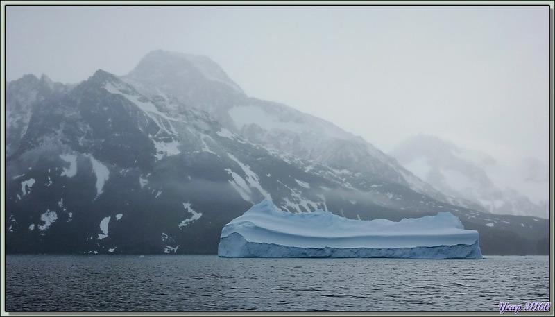 Iceberg - Fjord Drygalski - Géorgie du Sud