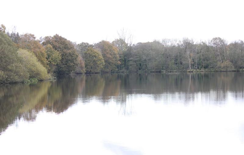 770 - Le lac des cygnes à Rosporden (29S)