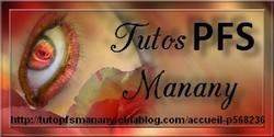 http://tutopfsmanany.eklablog.com/accueil-p568236
