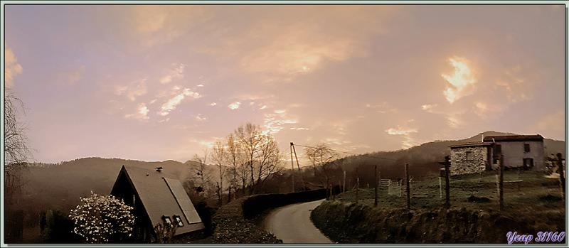 """Ambiance """"vent de sable jaune"""" au lever du jour - Lartigau - Milhas - 31"""