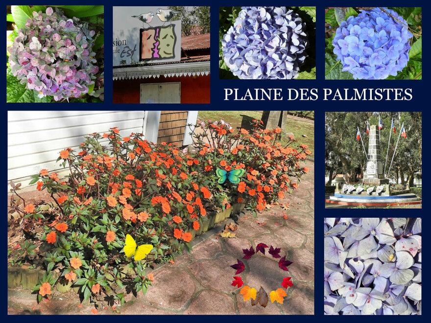 15/11/18 : Fête des Goyaviers (Plaine Palmistes) 4/6