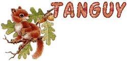 Dictons de la St Tanguy !