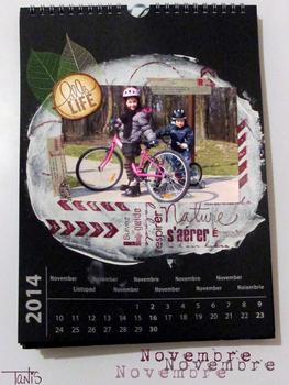 Calendrier 2014 - Novembre
