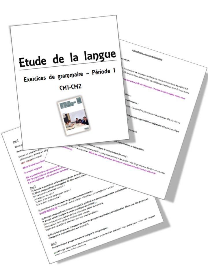Faire De La Grammaire Au Cm1 Cm2 Methode Picot La Classe