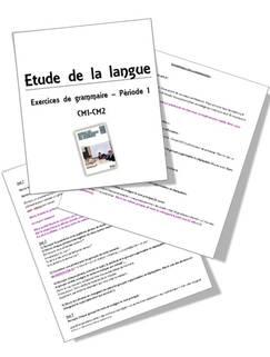 Faire de la grammaire au CM1 CM2, méthode Picot