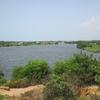 187 Bénin Lagune à Ouidha