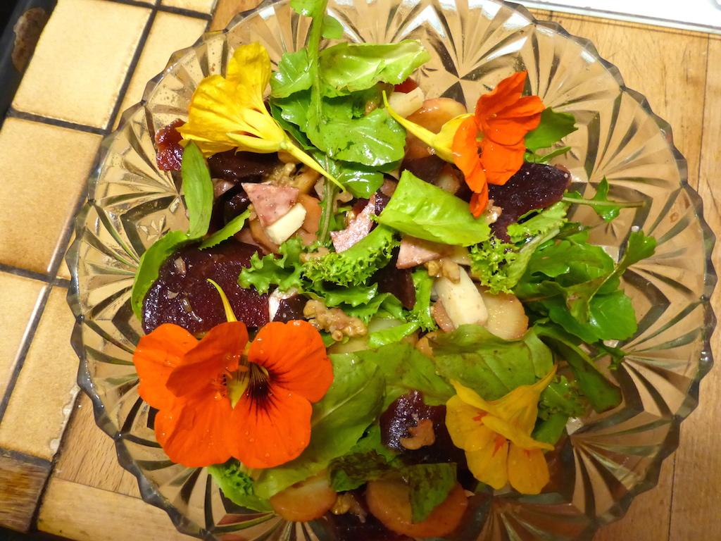 Un retour tout doux: gastronomie et flore!