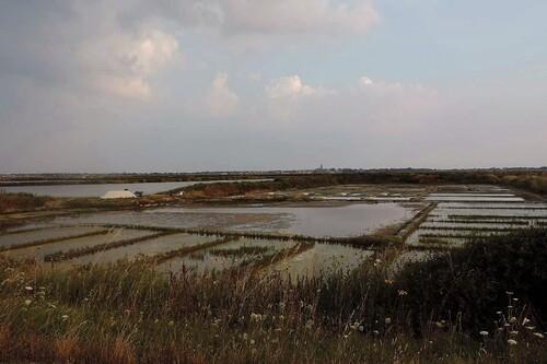 Crépuscule dans les marais salants...
