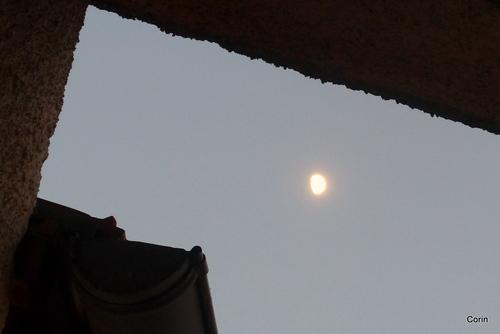 La lune d'un soir