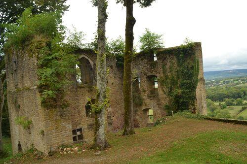 Les ruines du Château d'Arlay