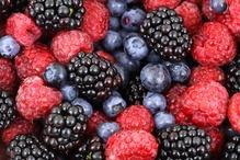 Petits moelleux aux fruits rouges