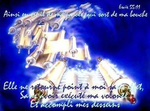 Toute Sa saine doctrine est consignée dans Sa Torah...