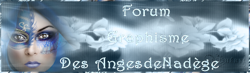 Forum lesangesdenadège