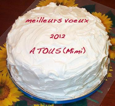 Michel vous offre, ainsi qu'à vos familles tous ses voeux de bonne année 2012 et surtout de bonne santé