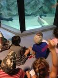 Sortie à l'aquarium de lyon. 2014
