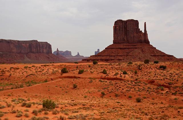 Le désert du Colorado aux U.S.A