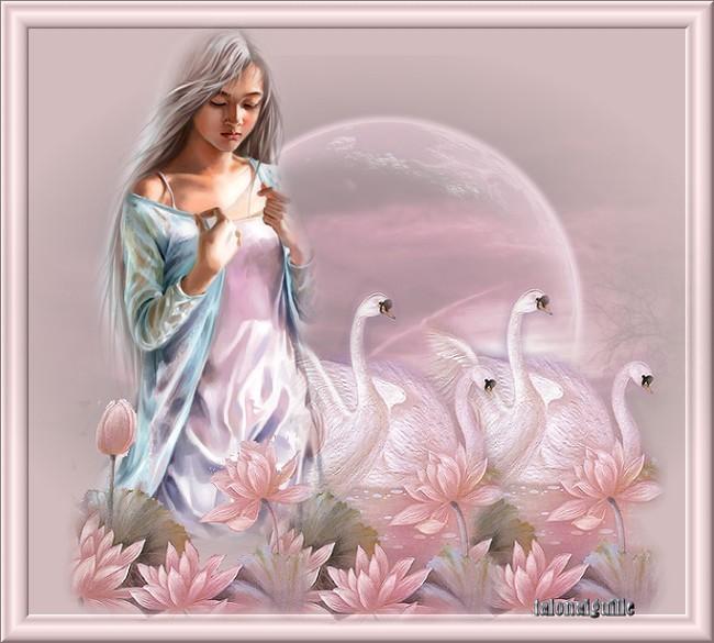 Nous fêtons L'Immaculée-Conception de la Vierge Marie (appelée aussi Notre Dame de l'Avent)