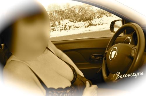 A poil dans l'auto