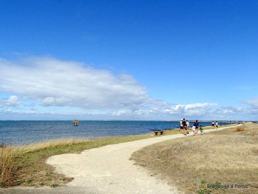 Sentier littoral à la Prée - La Plaine sur mer  44