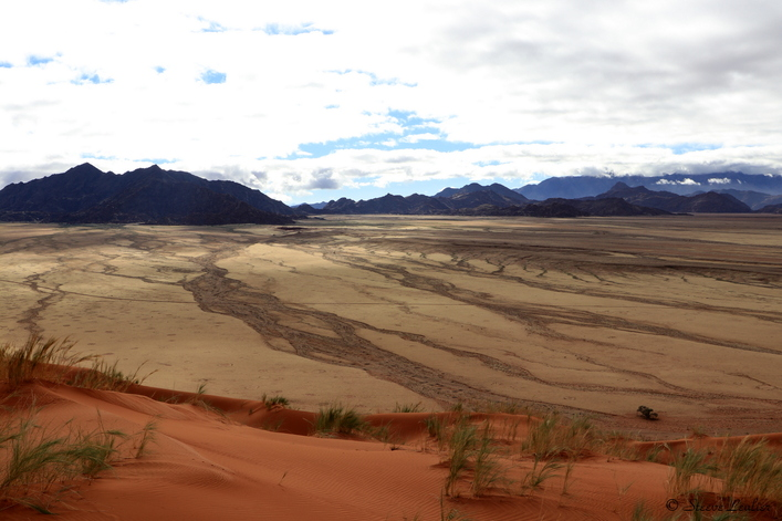 Erg du Namib, dune Elim