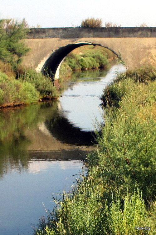Un pont et son reflet