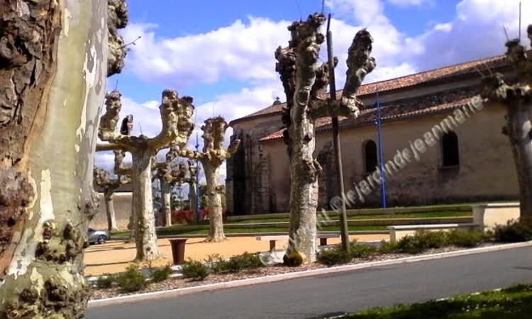 L'église Saint-Romain de Budos est une église catholique située sur la commune de Budos, dans le département de la Gironde, en France